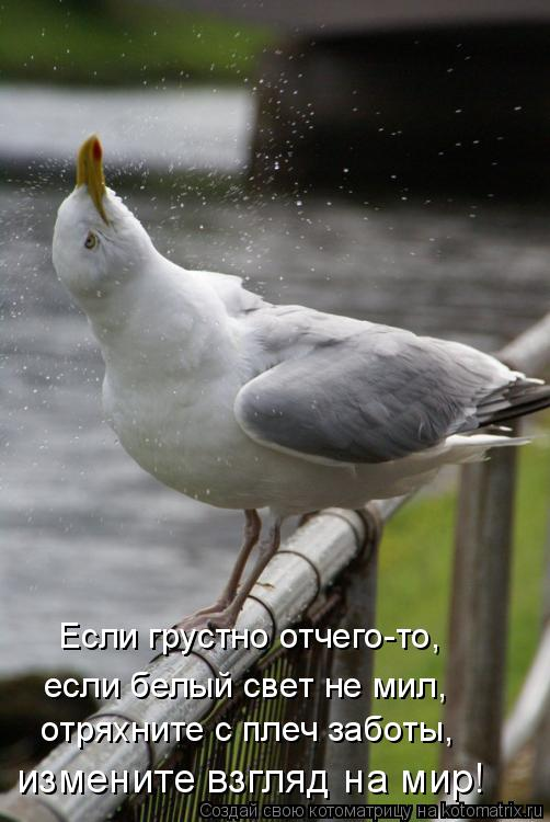 Веселые картинки  - 10.jpg