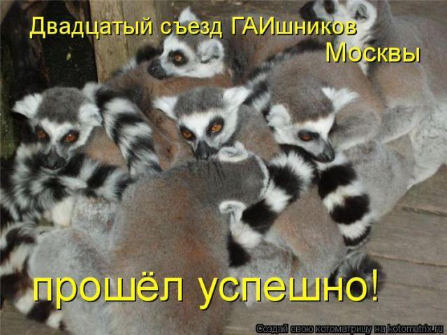 Веселые картинки  - img_24739948_1240_1.jpg