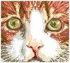 Аватар - avaar.cfm.jpeg