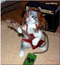Аватар - cat_roker_s_detstva.jpg
