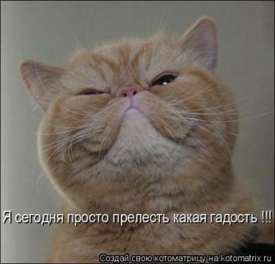 Аватар - eb.jpg