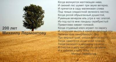 В стихи ухожу,как в стихию покоя... - 10600660_772378212803386_422516985664752990_n.jpg