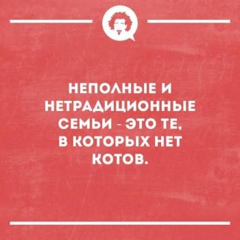 Кошки - очарование МОЁ - 50739455_1593955134040908_2399059768225300480_n.jpg