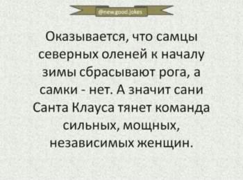 Правда жизни - 81418911_3337103932983175_6567224880729686016_o.jpg